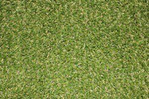 Artificial grass - short